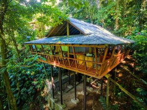 Tree House exterior view